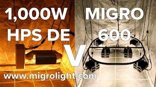 1000W HPS SE Dominator XXL Vs MIGRO 600 LED - Музыка для Машины