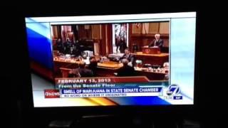 Denver Colorado Marijuana Senator Smoking Some Marijuana Be