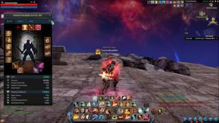 Riders of Icarus - 64k HP / 20k Def (With Pet) 40 Lvl Guardian Gears