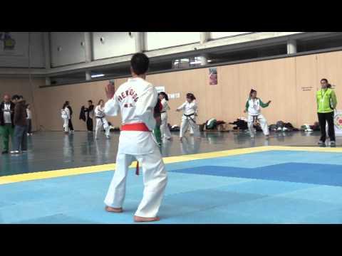 Taekwondo Cto. Navarro Poomsae (2)