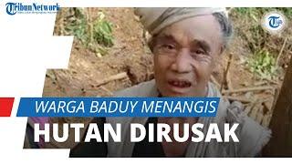 Hutan Sakralnya Dirusak, Warga Baduy Menangis Minta Tolong ke Pemerintah, Videonya Viral di Medsos