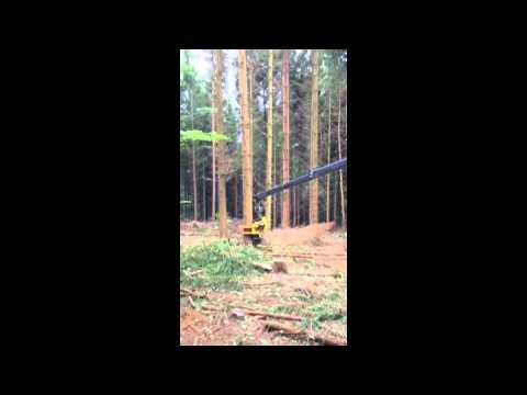 Kämpfer-Forst HSM mit GMT 035 Fällkopf