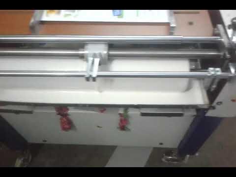 Strip Gumming Machine