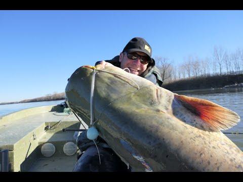 Vertikal Fischen Teil 1/Echolot/E-Motor/Boot/Rute-Rolle und Schnur