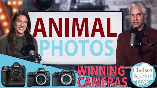 Winner's Cameras, Animal Photo Review, And Q&A: TC LIVE