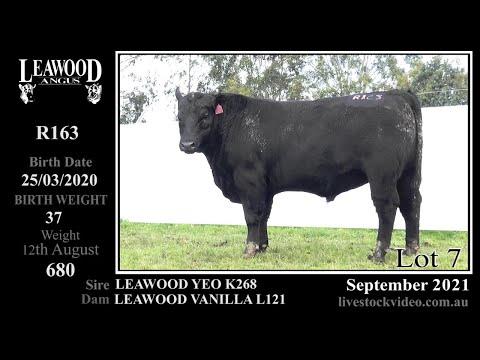 LEAWOOD YEO R163