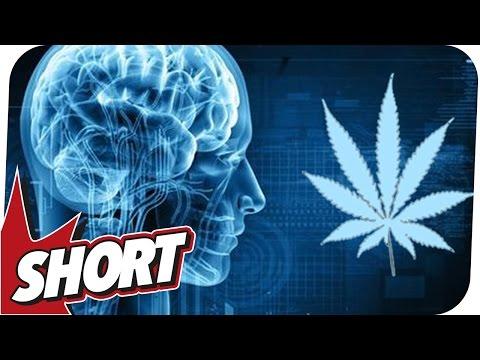 Die Referate nikotinowaja die Abhängigkeit