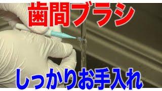 歯間ブラシの管理法?