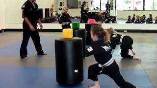 Basic SKILLZ FOCUS martial arts class for 5 and 6 year olds