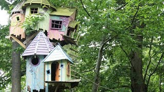 21 Treehouses That Will Awaken Your Inner Child thumbnail