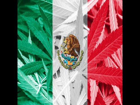Mexican Draft Adult Use Cannabis Regulations are In