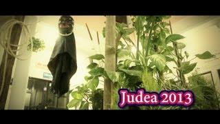 preview picture of video 'Preventivo Judea 2013 / Diablo Mayor'