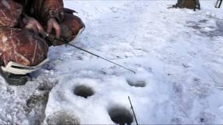 Зимняя палатка для рыбалки в пензе