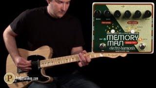 Electro Harmonix Deluxe Memory Man 550 TT
