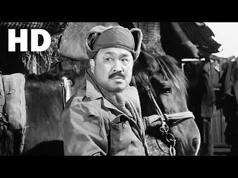 마부 1961년작 - 한국고전영화
