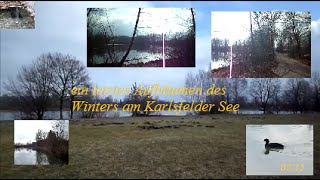preview picture of video 'Ein letztes Aufbäumen des Winters am Karlsfelder See'
