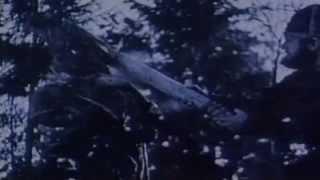 Bathory - In Memory of Quorthon