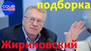 Жириновский лучшая подборка coub youtube