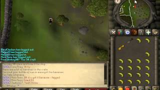 RuneScape   2007   Pirate's Treasure