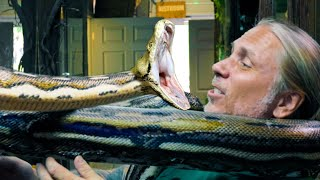HUGE ANGRY SNAKE!! SCARY AT TIMES!!   BRIAN BARCZYK
