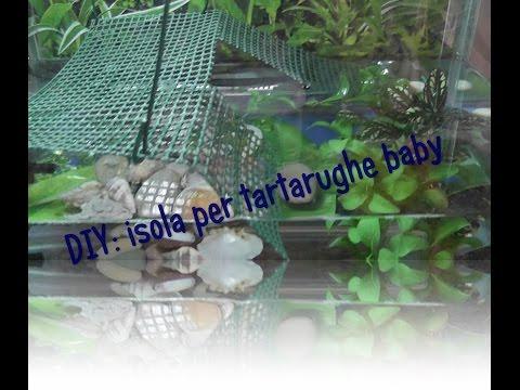 DIY: isola per tartarughe baby