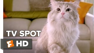 Nine Lives TV SPOT - Purrspective (2016) - Kevin Spacey Movie