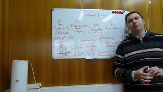 Вирусный гепатит. Класификация. Патофизиология. Диагностика