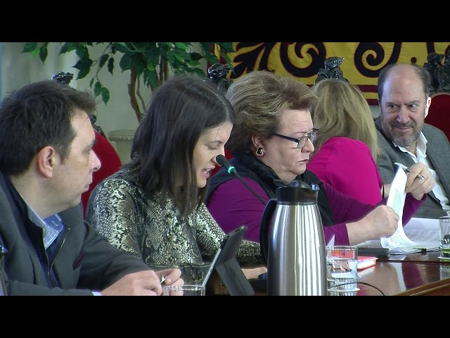 01/02/2019 - Pleno Municipal Ordinario