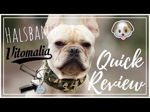 Review 1 / VITOMALIA HALSBAND / TEST HUNDEHALSBAND