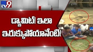 Durgada snake looking for a comfortable place to rest - TV9