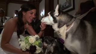 Dog of Honor in a Wedding
