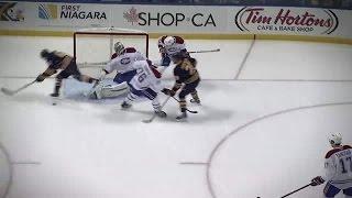 Top 10 Goals of the 2014-15 NHL Regular Season