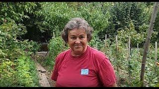 Jutka mama kertje szeptemberben