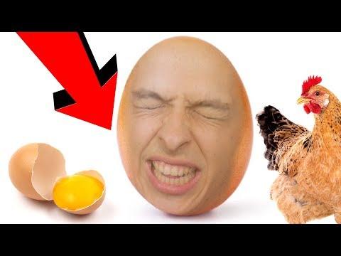 JSEM VEJCE! | I am an egg