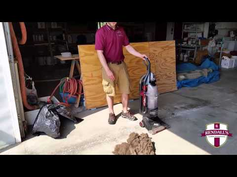 Why you should vacuum your carpets regularly