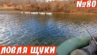Ловля щуки поздней осенью на реке