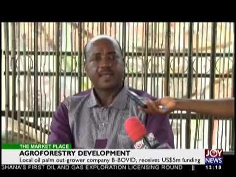 Agroforestry Development - The Market Place on JoyNews (7-11-18)