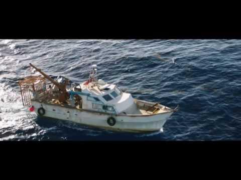 meilleur film requin