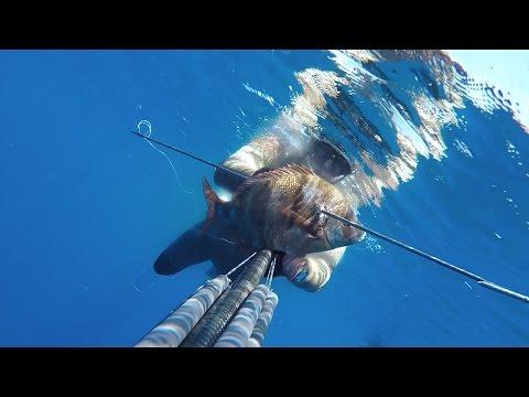Negozi di Penza tutti per pesca