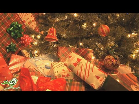 Instrumental Christmas Music 24/7 Live: Traditional Christmas Songs | Piano & Orchestra