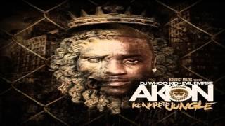 Akon Feat. Gotye Money x J Frost - Used To Know (Remix)