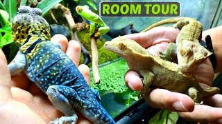 Reptile and Amphibian Room Tour July 2017
