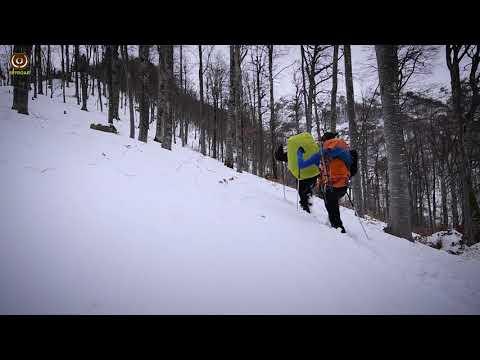 Снегоходки TSL 305 Pioneer
