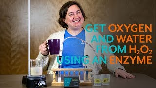 Get Oxygen And Water From Hydrogen Peroxide Using An Enzyme
