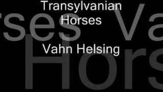 Transylvanian Horses