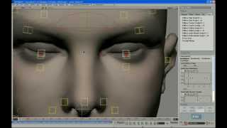 Face Robot Legacy - Part 9: Tuning the Eyelids