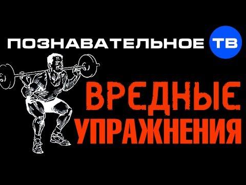 Вредные упражнения (Познавательное ТВ, Герман Тюхтин)