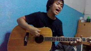 The Only Way That I Know How to Feel - Boys like Girls (Acoustic cover)
