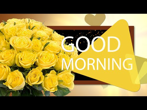 ✅Good Morning ✅Whatsapp, Wishes, Quotes, Message, Greetings