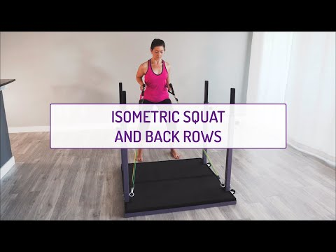 Isometric Squat and Back Rows